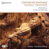 Camino De Santiago: Medieval Music from Spanish Pilgrimages by Freiburg Spielleyt