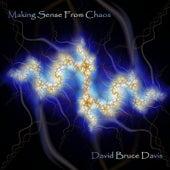 Making Sense From Chaos by David Bruce Davis
