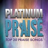 Play & Download Platinum Praise by Various Artists | Napster