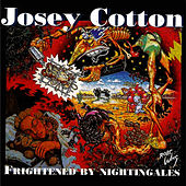 Frightened By Nightingales by Josie Cotton