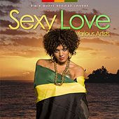 Play & Download Sexy Love - R'n'b Meets Reggae Lovers by Various Artists | Napster