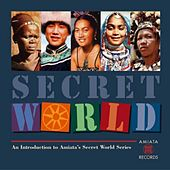Secret World by Various Artists