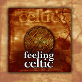 Felling Celtic by The New Age Orchestra