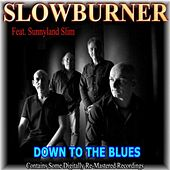 Down to the Blues (feat. Sunnyland Slim) by Various Artists