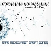 Play & Download Rare Mixes From Great Songs by Jim Kerr White Spaces | Napster