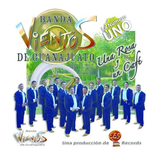 Play & Download Una Rosa Y Un Cafe by Banda Vientos De Guanajuato | Napster