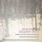 Play & Download Diggunim Trees by Jay Gordon | Napster