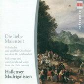 Play & Download Choral Concert (German): Hallenser Madrigalisten - Lechner, L. / Meiland, J. / Schein, J.H. / Sartorius, T. / Hassler, H.L. by Various Artists | Napster