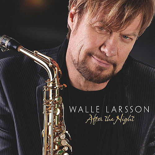 After the Night by Walle Larsson
