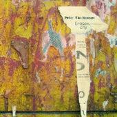 Entropic City by Peter Van Hoesen