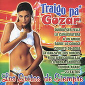 Play & Download Traigo Pa' Gozar: Los Exitos de Siempre by Various Artists | Napster