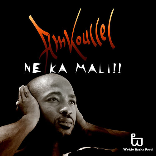 Play & Download Ne Ka Mali by Amkoullel | Napster