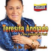 Teresita Andrade & Los Quipus del Perú by Teresita Andrade
