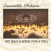 Not Much Is Worse than a Troll by Ensemble Polaris