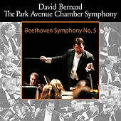 Beethoven: Symphony No. 5 by David Bernard