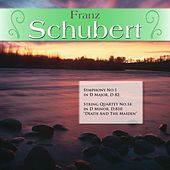 Play & Download Franz Schubert: Symphony No.1 in D Major, D 82; String Quartet No.14 in D Minor, D.810