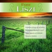 Franz Liszt: Grandes Etudes de Paganini; Hungarian Rhapsody No.2; Piano Sonata in B Minor; Venezia e Napoli by Various Artists