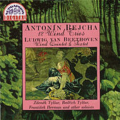 Play & Download Rejcha: 12 Wind Trios - Beethoven: Wind Sextet & Quintet by Various Artists | Napster