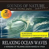 Play & Download Relaxing Ocean Waves (Nature Sounds) by Relaxing Sounds of Nature | Napster