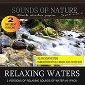 Play & Download Relaxing Waters (Nature Sounds) by Relaxing Sounds of Nature | Napster