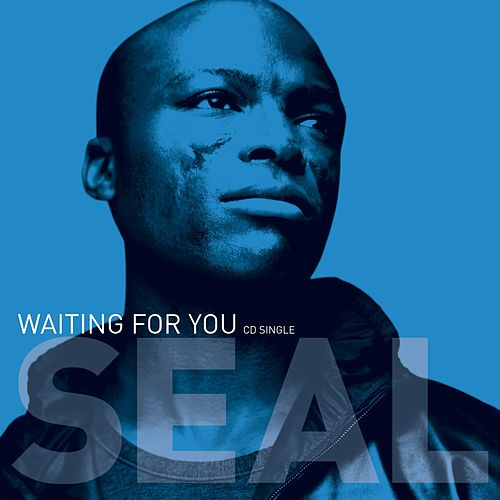 Play & Download Waiting For You by Seal | Napster