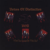 What You Gonna Do With Me? by The Voices Of Distinction