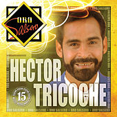 Play & Download Oro Salsero by Hector Tricoche | Napster