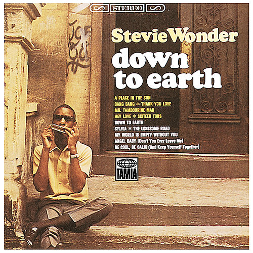 Down To Earth by Stevie Wonder