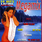 Play & Download Megamix by Various Artists | Napster