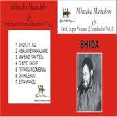 Shida by Mbaraka Mwinshehe