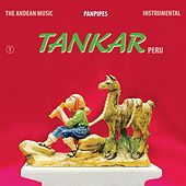 The Andean Music: Panpipes - Instrumental Vol. 1 by Tankar Peru