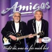 Weißt du, was du für mich bist by Los Amigos