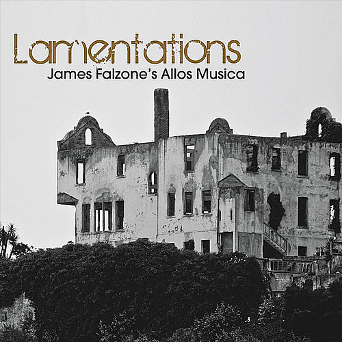 Play & Download Lamentations by James Falzone | Napster