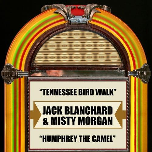 Tennessee Bird Walk / Humphrey The Camel by Jack Blanchard