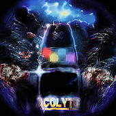 Play & Download Immaculate Jungle by Acolyte | Napster