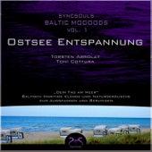 Play & Download Syncsouls Baltic Moooods - Ostsee-Entspannung: Meeresrauschen, Wellen, Möwen und Klänge zum Ausspa by Torsten Abrolat | Napster
