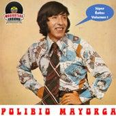 Play & Download Super Exitos Volumen I by Polibio Mayorga | Napster