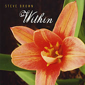 Play & Download Within by Steve Brown | Napster