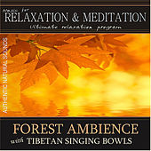 Play & Download Forest Ambience With Tibetan Singing Bowls: Music for Relaxation and Meditation - Single by Music For Relaxation | Napster
