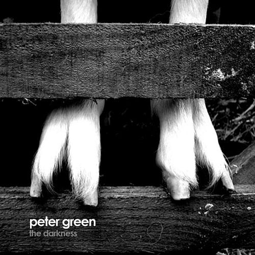Play & Download The Darkness by Peter Green | Napster