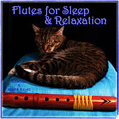 Play & Download Native American Flute for Sleep & Relaxation with Sounds of Nature (For Massage, New Age, Spa & Deep Sleep Therapy) by Lullaby Tribe | Napster