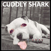 Play & Download Cuddly Shark by Cuddly Shark | Napster