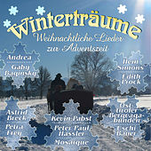 Play & Download Winterträume by Various Artists | Napster