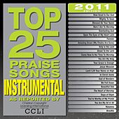 Play & Download Top 25 Praise Songs Instrumental 2011 by Various Artists | Napster