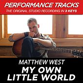 Premiere Performance Plus: My Own Little World by Matthew West