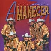 Play & Download No Te Puedo Olvidar by Amanecer | Napster