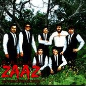 Grupo Zaaz de Victor Hugo Ruiz II by Grupo Zaaz de Victor Hugo Ruiz