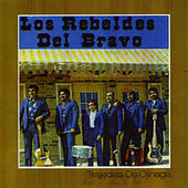 Play & Download Trajedias de Ojinaga by Los Rebeldes del Bravo | Napster