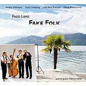 Fake Folk by Various Artists