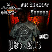 Mr. S13 by Mr. Shadow